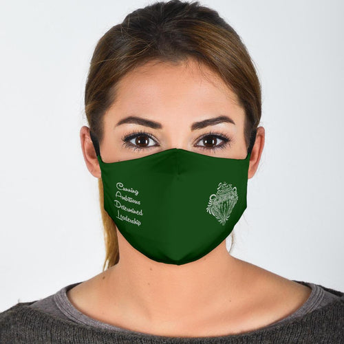 Ineffableshop™ Harry Potter Slytherin Face Mask - Ineffable Shop