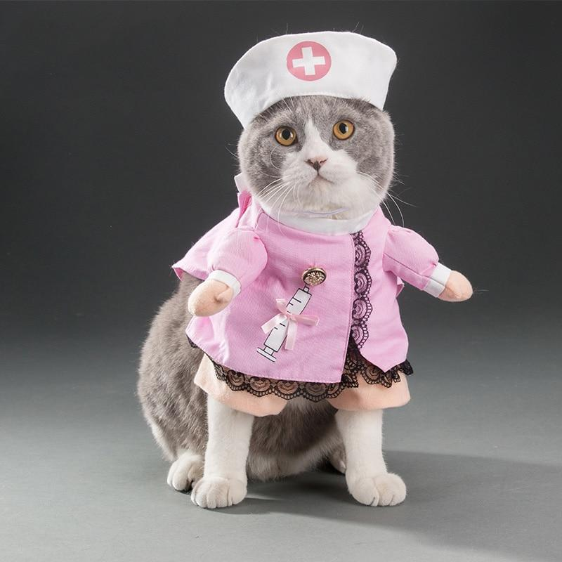 Funny Nurse Costumes For Dogs & Cats