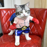 Funny Dog & Cat Boxer Costumes