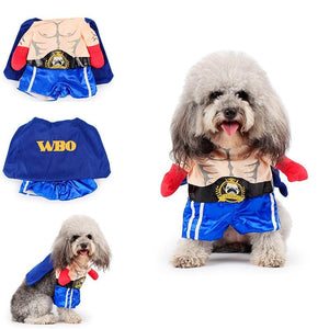 Funny Dog & Cat Boxer Costumes - - Ineffable Shop