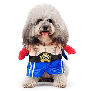Funny Dog & Cat Boxer Costumes - Boxer / L - Ineffable Shop