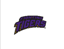 Load image into Gallery viewer, MVP-10 Fighting Tigers