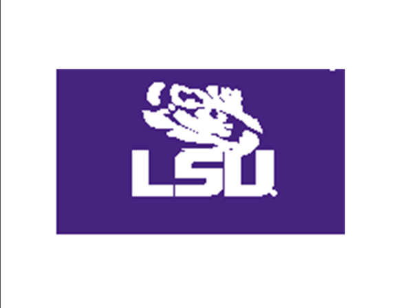 SS Jr -08 Eye over LSU