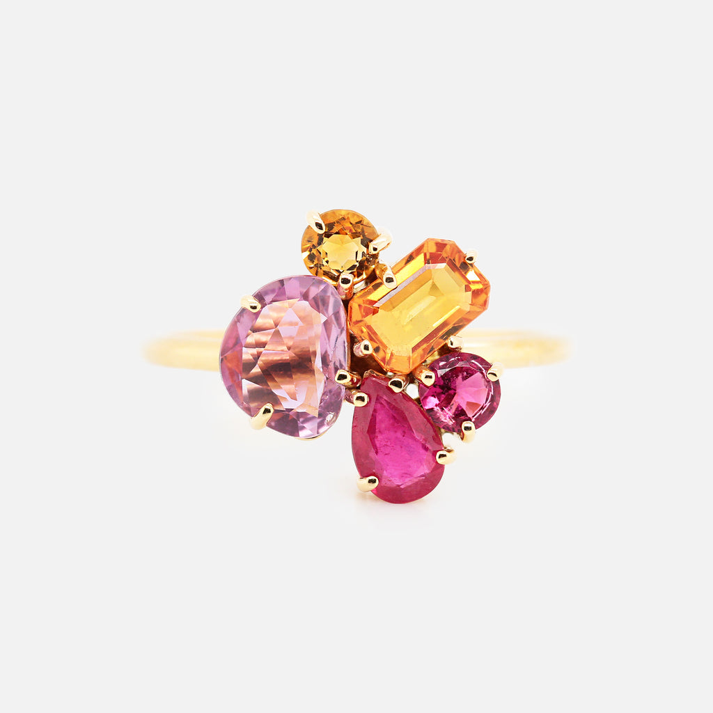 Anillo 'Galaxy' Raspberry