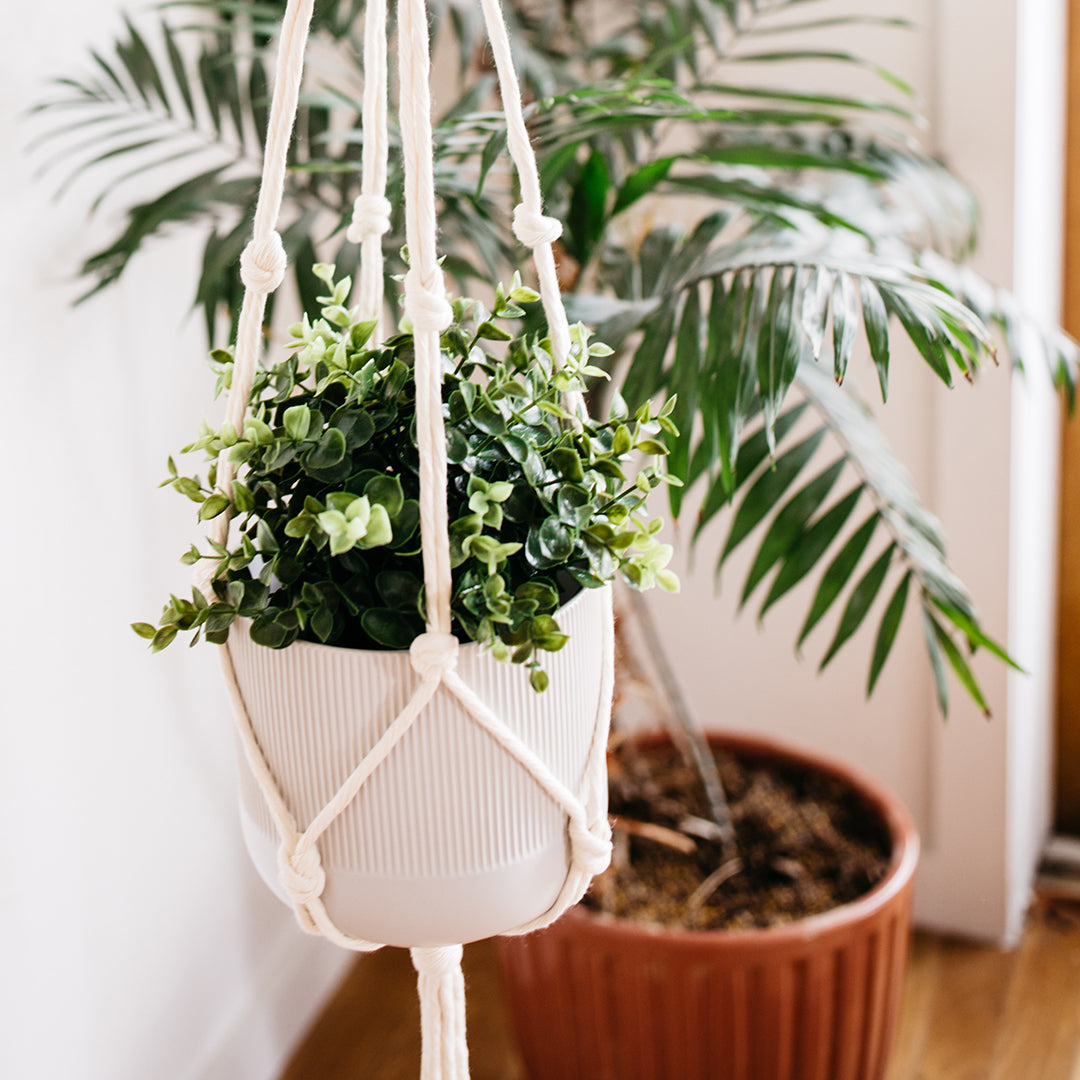 Crown Knot Plant Hanger
