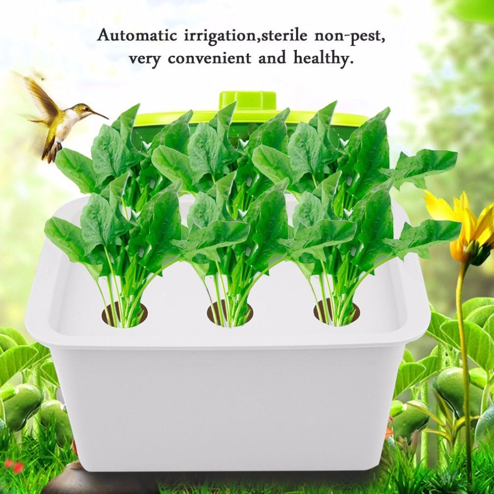 of gardening the ideas for garden future hydroponic soilless hydroponics