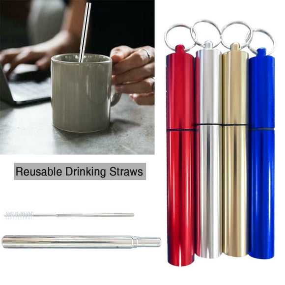 Stainless Steel Extendable Straw (Family Pack of 4 different colors)