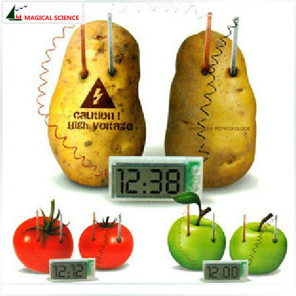 Potato Clock Electrochemical Cell Experiment set