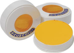Kryolan AquaColor Bright Yellow 509 - Silly Farm Supplies