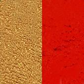 Wonder Palette Refill Metallic Gold and Red - Silly Farm Supplies