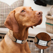 Personalized Nameplate for Dog and Cat ID Tag Customized Engraved  name tag with Rubber holder