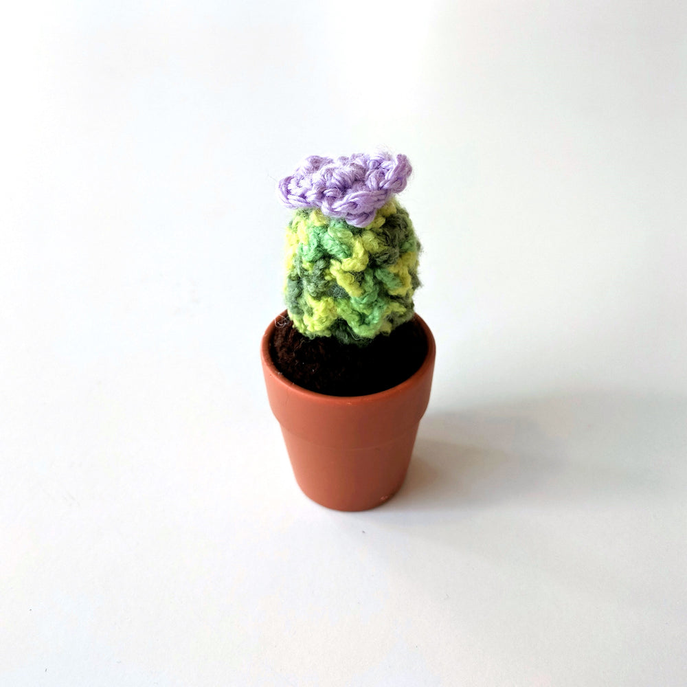 Mini Crocheted Cactus