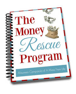 The Money Rescue Program and Workbook