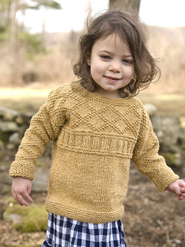 Berroco Ana Kid's Pullover Kit