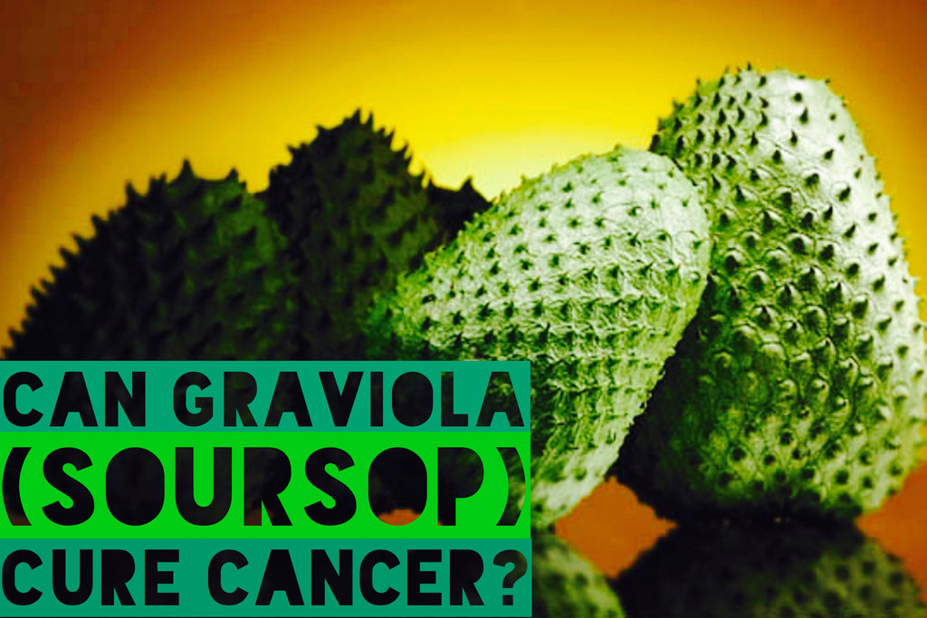 Soursop-Graviola – The Superfood That Prevents Cancer