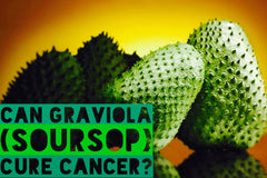 Can Soursop Prevent and Cure Cancer