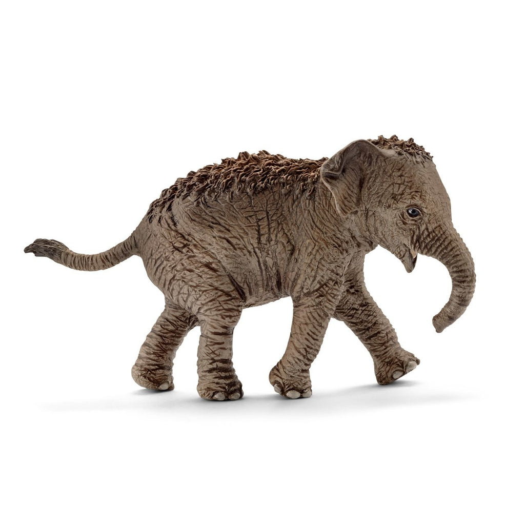 Schleich Asian Elephant, calf