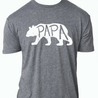 Jane Marie Papa Bear Premium Heather T-Shirt