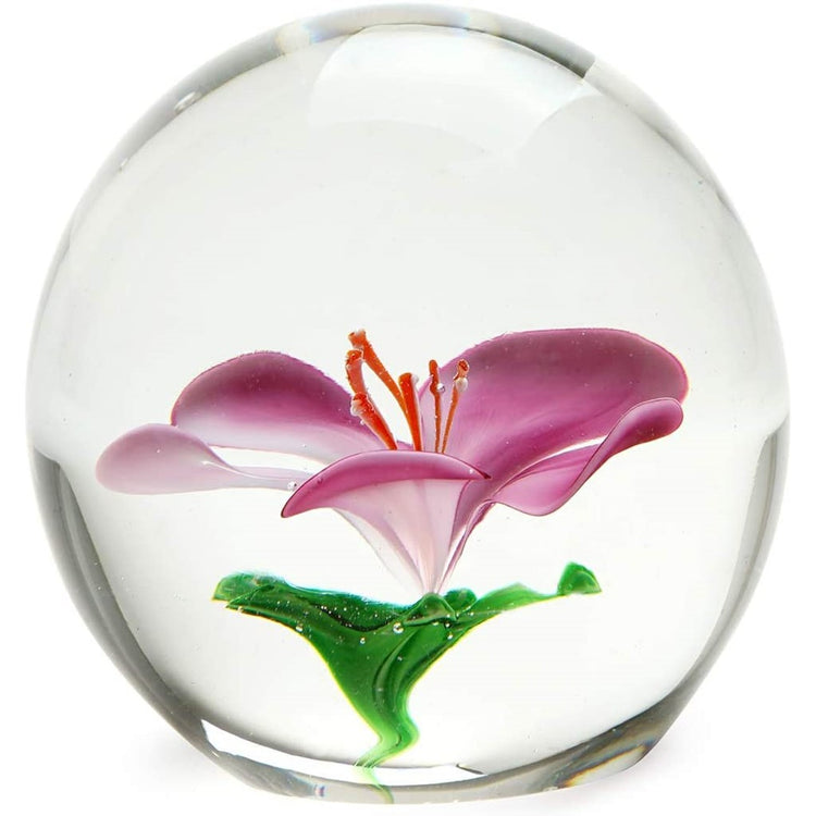 clear weight with pink cherry blossom inside