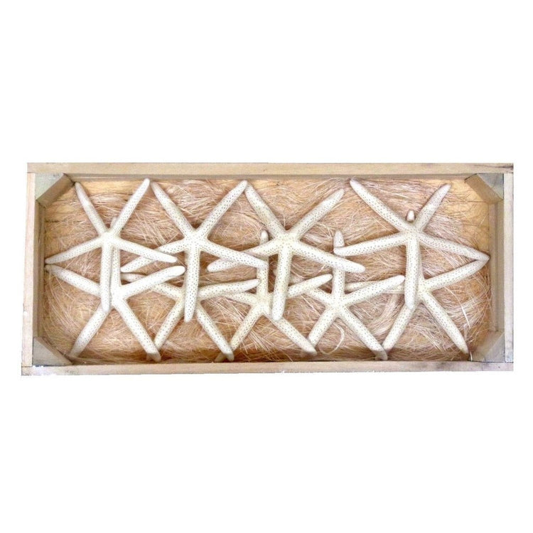 Crate shaped box with white starfish.