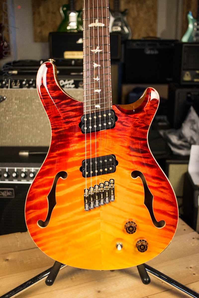 Paul Reed Smith PRS Private Stock Custom 24 Multi Scale