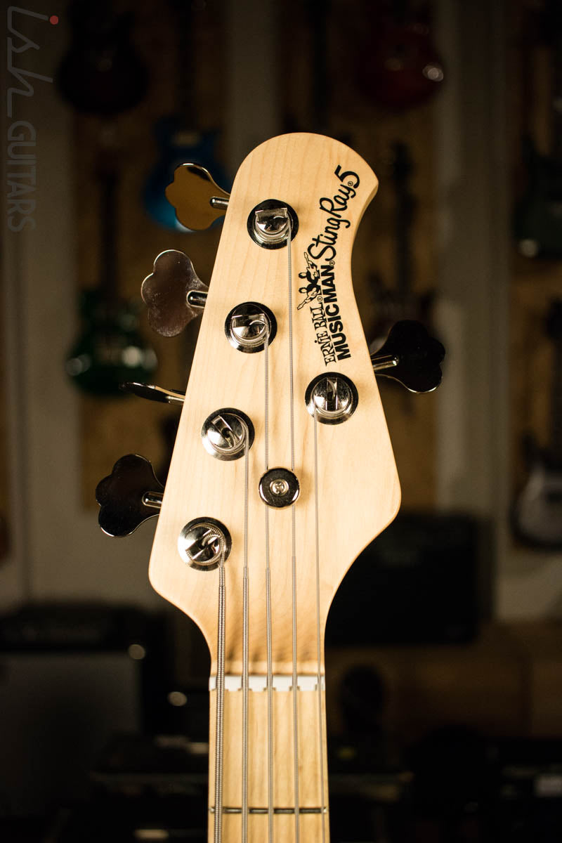 musicman stingray serial number location