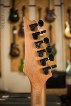 Ibanez RGEW521ZC Ziricote Top Natural Flat Finish