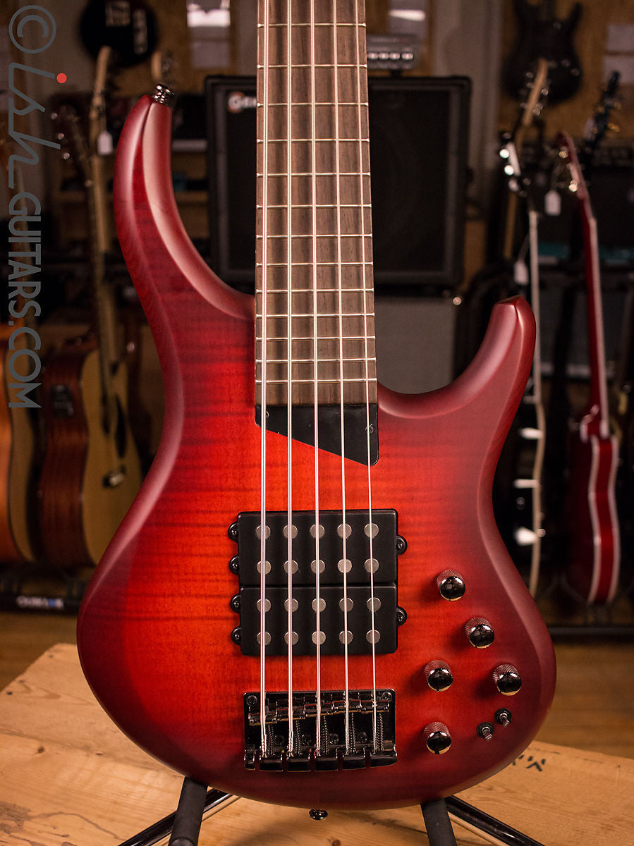 MTD Kingston Super 5 Dr. Brown's Burst Bass Guitar Humbuckers