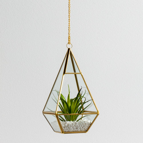 Oro Hanging Glass Terrarium With Chain