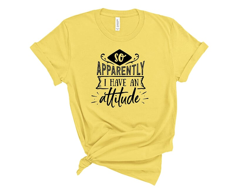 So Apparently I Have An Attitude T Shirt