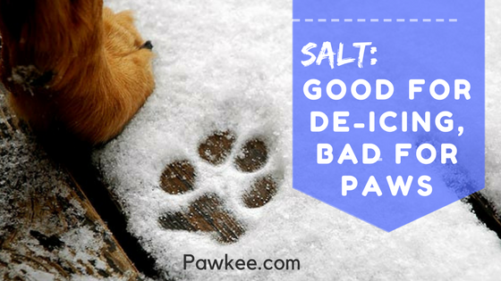 Salt: Good for De-icing, Bad for Paws