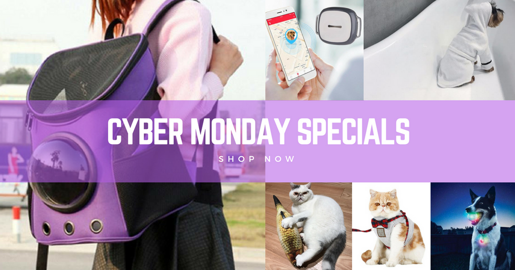 The most Pawesome CYBER MONDAY Deals