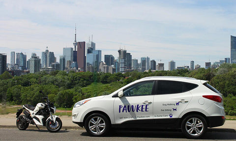 ebike and SUV, Pet Sitting services in Toronto