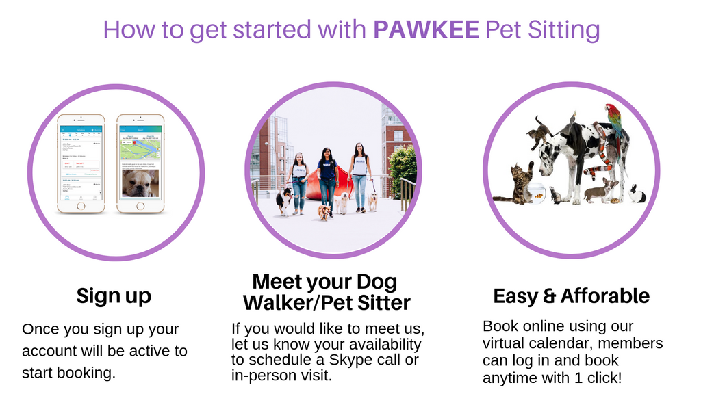 How to book dog walker or a pet sitter?