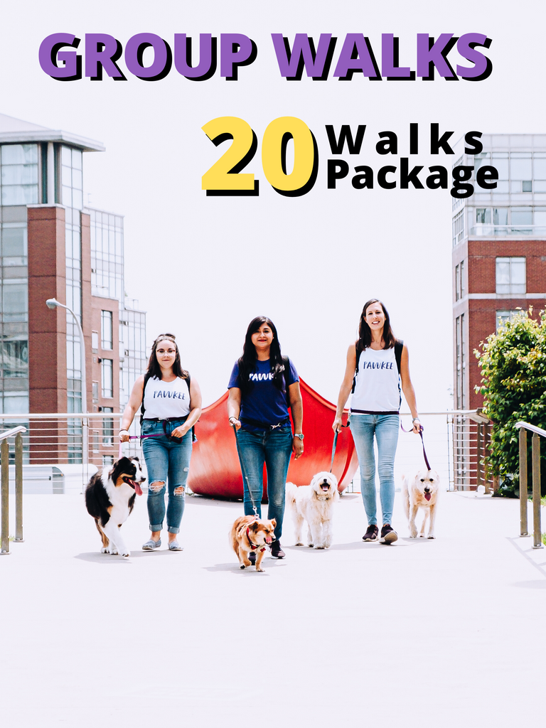 20 GROUP Walks Pawkee Package - Pawkee Pet Sitting