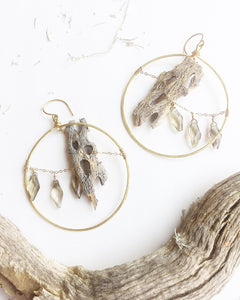 .:Cholla Skeleton Hoops:.