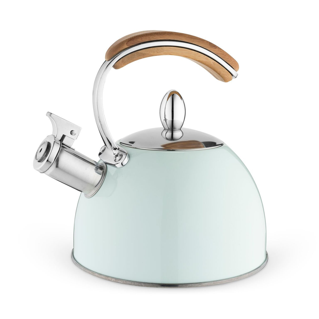 Presley Stainless Steel and Wood Tea Kettle-Home - Coffee + Tea - Tea Pots + Kettles-PINKY UP-Mint-Peccadilly