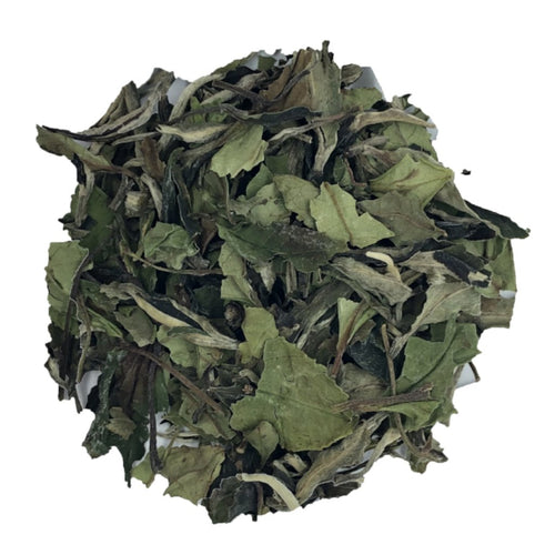 Organic Pai Mu Tan luxury White tea