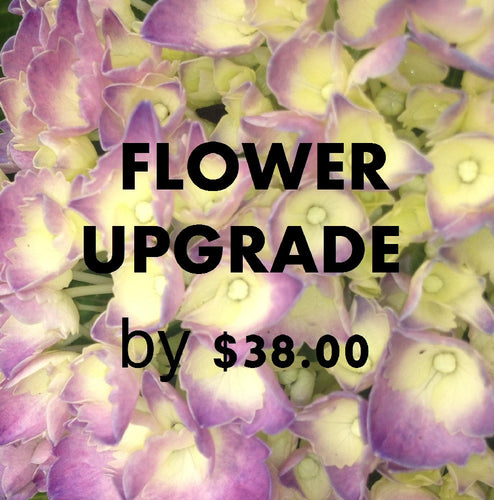 UPGRADE FLOWERS $38 COLOUR OPTIONS
