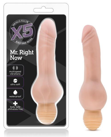X5 Mr Right Now Dildo-dildo-Blush Novelties-beige-Nakees