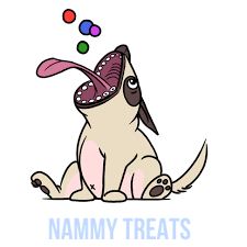 NAMMY TREATS