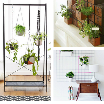 7 Amazing Indoor Garden Ideas For Small Apartments