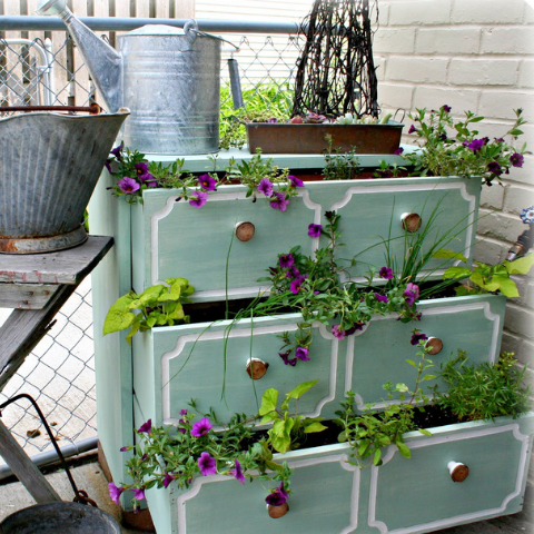 Colorful DIY Spring Garden Projects