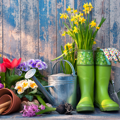 Essential Tips To Get Your Garden Ready For Spring