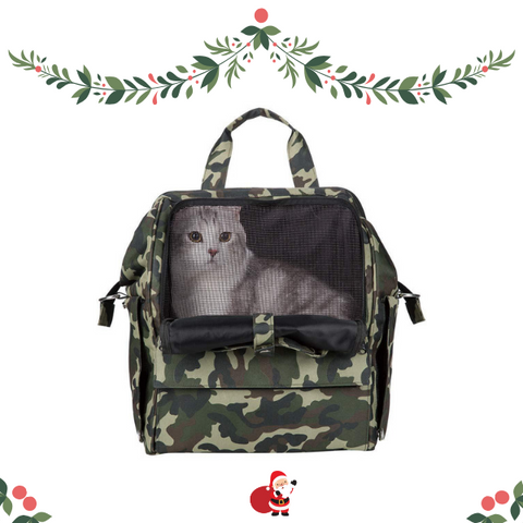 Christmas gifts ideas for teenage girl cat carrier