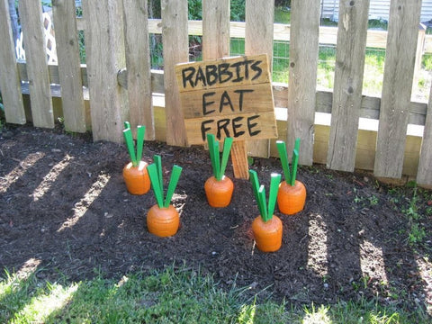 DIY Outdoor Carrots Easter