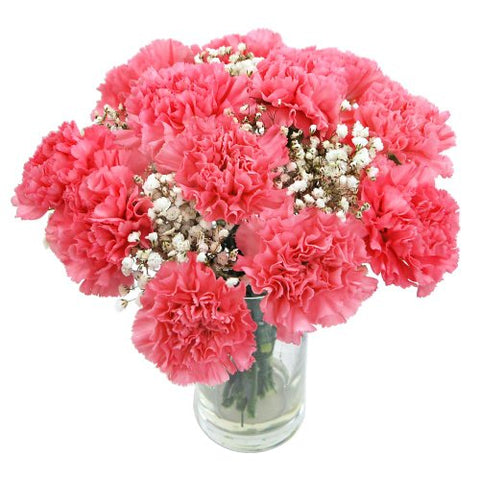 Spring Flowers Carnations