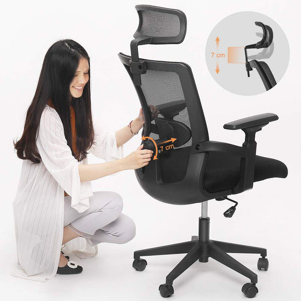 LANGRIA Ergonomic Mesh Office Chair