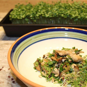Herby Microgreen Barley Salad with Butter Browned Mushrooms & Shallots