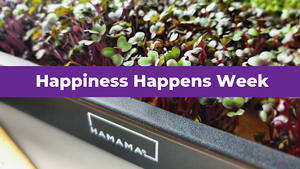 Happy Happiness Happens Week!
